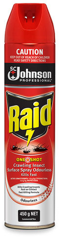 Raid Fly Spray One Shot Crawling Insect 450g