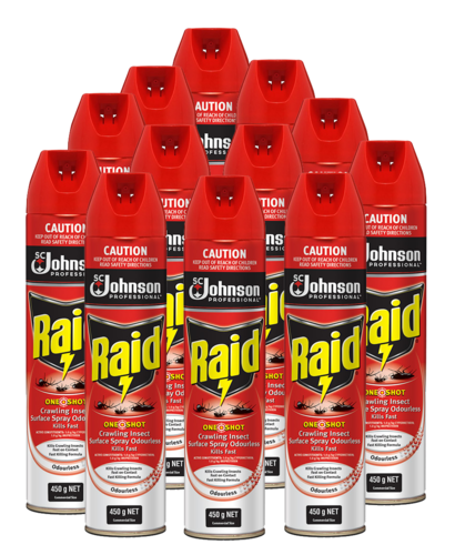 Raid Fly Spray One Shot Crawling Insect 450g ctn 12
